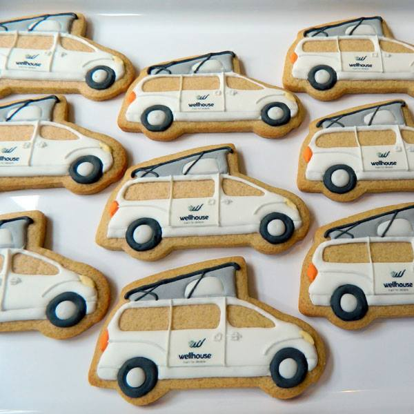 Modern Camper Cookies for Wellhouse Leisure